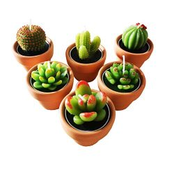 Cactus Tealight Candles with tiny terracotta pots holder, Succulent baby shower favors decoratio ...