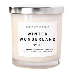 Winter Wonderland Candle Natural Soy Wax White Jar Silver Lid Scented Clove Cinnamon Berry Plum  ...