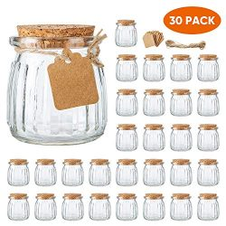 Brajttt 30 PCS 7 oz Glass Jars with Cork Lids, Yogurt Container for Jam, Spices, Extra Tags and  ...