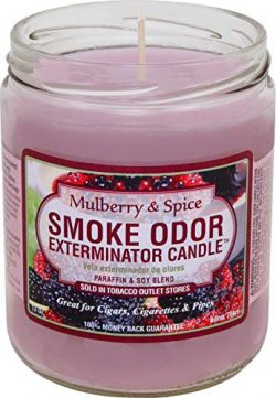 Smoke Odor Exterminator Odor Exterminator Mulberry and Spice 13oz by Smokers Candle, 13 oz, Mulb ...