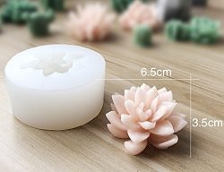 3D Silicone Succulent Cactus Candles Handmade Molds Fondant Mould Soap Mold for Valentine' ...