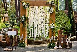 Leyiyi 6x4ft Photography Background Happy Valentine's Day Backdrop Wedding Flora Arch Door ...
