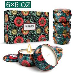 Scented Jar Candles Gift Set Fragrance Essential Oils Aromatherapy Candle Natural Soy Wax for Wo ...
