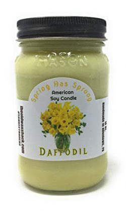 The Old Wax Shack Daffodil Soy Candle – 16 Oz. Mason Jar, Limited Edition Easter, Spring C ...