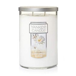 Yankee Candles Early Spring Bloom 2-Wick Large Tumbler,Festive Scent