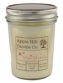 Apple Hill Candle Company Natural Soy Candle – Winter Wonderland (7 oz.)