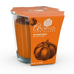 Aroma From Nature Pumpkin Spice 4 oz AireCare Scented Candle – 1 Pack – Aromatherapy ...