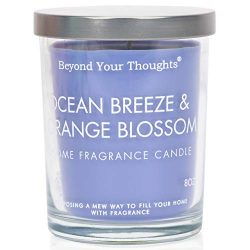 Beyond Your Thoughts Scented Candle Aromatherapy Wax Mixed Popular Long Lasting Ocean Breeze& ...