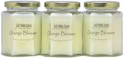 Just Makes Scents 3 Pack – Orange Blossom Scented Blended Soy Candle | Strong Spring Flora ...