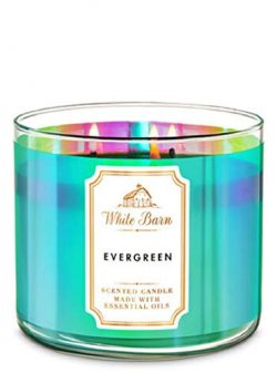 White Barn Bath & Works 3-Wick Candle in Evergreen (2019)