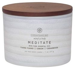 Chesapeake Bay Candle Mind & Body Serenity Scented Candle, Meditate with Pure Essential Oils ...