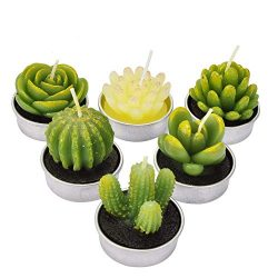 SCENTORINI 6 Pack Cactus Tealight Candles, Mini Delicate Succulent Plants Candles, Handmade Arom ...