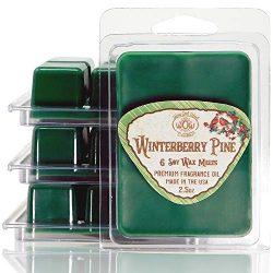 Way Out West Candles – Scented Wax Melts – Highly Fragrant Air Freshener – 4 P ...