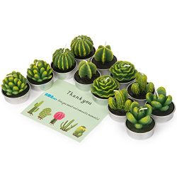 AMASKY Cactus Tealight Candles, Handmade Delicate Succulent Cactus Candles for Valentine's ...