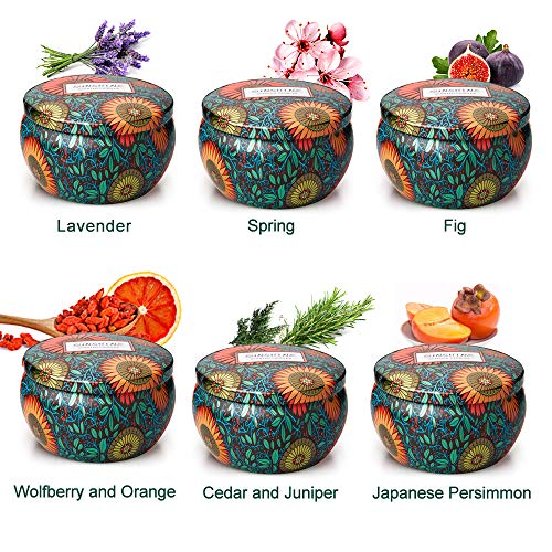 CREASHINE Scented Candles Gift Set of 6, Natural Soy Wax Aromatherapy Candles Sleeping Stress Re ...