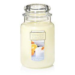 Yankee Candle Large Jar Candle, Juicy Citrus & Sea Salt