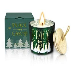 YINUO LIGHT 8 Oz Large Scented Candles Christmas Gift Set, 100% Natural Soy Wax Portable Tin Can ...