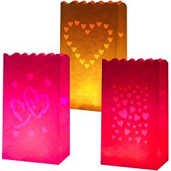 Aneco 24 Pieces White Luminary Bags Flame Resistant Paper Lantern Bags 3 Styles Heart Designs Fi ...