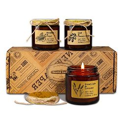 CREASHINE Scented Candles Gift Set, 3.5Oz Portable Glass Jar Candles Gift for Men, Natural Organ ...