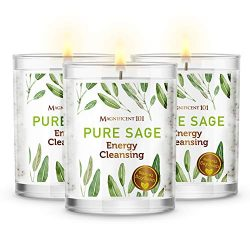 Magnificent101 Pure Sage Smudge Set of 3 Candles for House Energy Cleansing, Banish Negative Ene ...