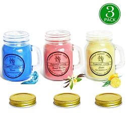 HELLY 3 Pack Everyday Assortment Mini Scented Mason Jar Candles – 3.5 Oz French Vanilla, 3 ...