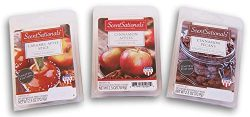Better Homes and Gardens Holiday Scented Wax Cubes Bundle – Cinnamon Pecans, Cinnamon Appl ...