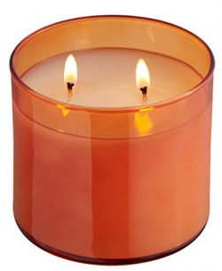 Dianne's Custom Candles Luxury Fragranced 2 Wick Candle (Pumpkin Amaretto Scent)
