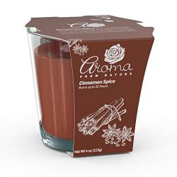 Aroma From Nature Cinnamon Spice 4 oz AireCare Scented Candle – 1 Pack – Aromatherap ...