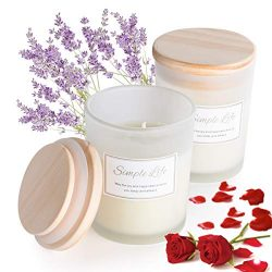 Scented Candle Set, Balance Harmony Soy Candle for Home Energy Cleansing Stress Relief Candle Fr ...