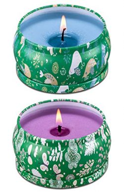 Scented Candles 4.5oz Each 25H Burning Time Big Travel Tin Soy Wax Candles Strongly Smells, Crea ...