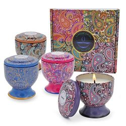 Enamorare Scented Candles Natural Soy Wax 4 Oz Portable Travel Tin Candles Gift Set of 4 (Vanill ...