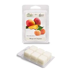 Country Jar Mango and Tangerine Wax Melts (6-Cube Pk.) Scented Soy Fragrance Tarts : Winter Sale!