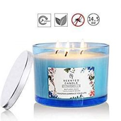 HELLY Scented Candle Citronella Candles Aromatherapy Candles Scented Soy Wax 3 Wick,75 Hour Burn ...