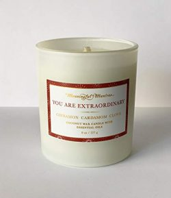 MEANINGFUL MANTRAS You are Extraordinary Cinnamon, Cardamom, and Clove Holiday Candle – Sp ...