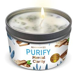PURIFY Aromatherapy Candle for Clarity – Sage, Palo Santo, Sandalwood, Lavender Scented Na ...