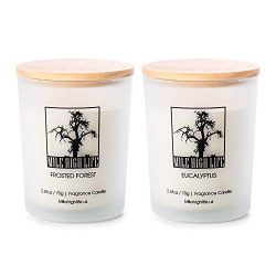 Natural Soy Jar Candle | Eucalyptus | Frosted Forest Scent | 2 in 1 Gift Pack | Rich Scented | H ...