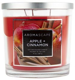 Aromascape 3-Wick Scented Jar Candle, Apple & Cinnamon