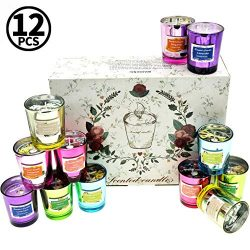 LucaSng Scented Candles Gift Set, Natural Soy Wax Candles 2 Oz Unit Jar Candles Women for Stress ...