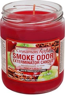 Smoke Odor Exterminator 13oz Jar Candle, Cinnamon Apple – Pack of 2