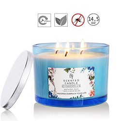 Howemon Citronella Candles Scented 3 Wick, Giant 1lb Soy Wax, Glass Jar 14.5 oz, 80 Hour Burn, O ...