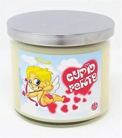 S&M Candle Factory Cupids Farts Candle ~ Red Hot Cinnamon Scented 100% Soy Wax 3 Wick Candle ...
